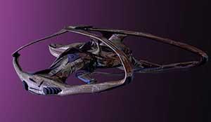Andromeda (Андромеда) 5