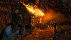 скриншоты The Witcher 3