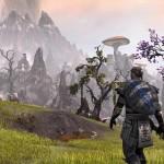 Скриншоты к игре The Elder Scrolls Online