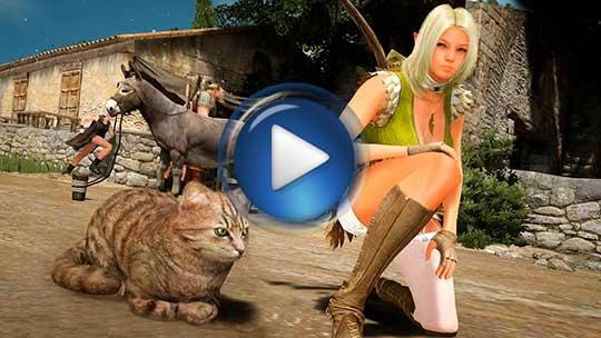 Официальный видео трейлер к игре Black Desert