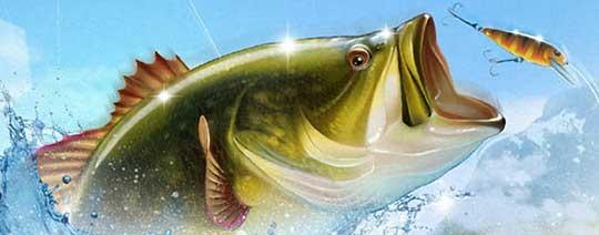 На рыбалку «Let's Fish»