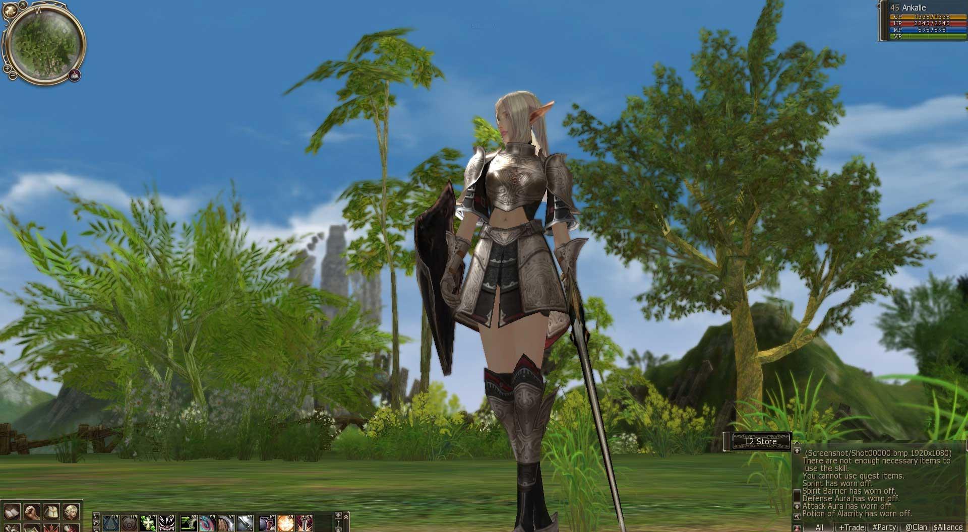 Скриншот к игре Lineage 2