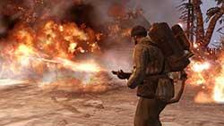 скриншоты Company of Heroes 2